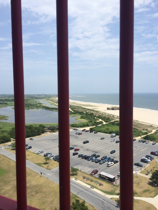 View from the top of Cape May lighthouse