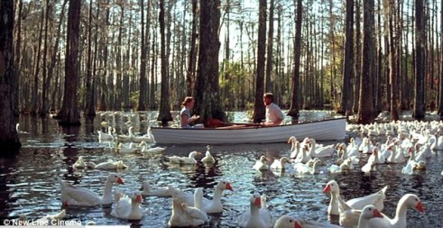 cypress gardens, the notebook